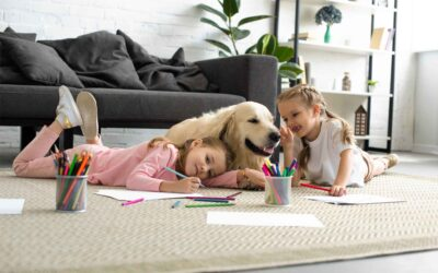 Building a new home for your family and fur babies? Here are 4 essentials for a happy and healthy pet